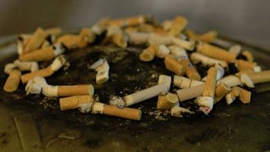 Littering could literally be halved if cigarette butts weren't thrown on the ground