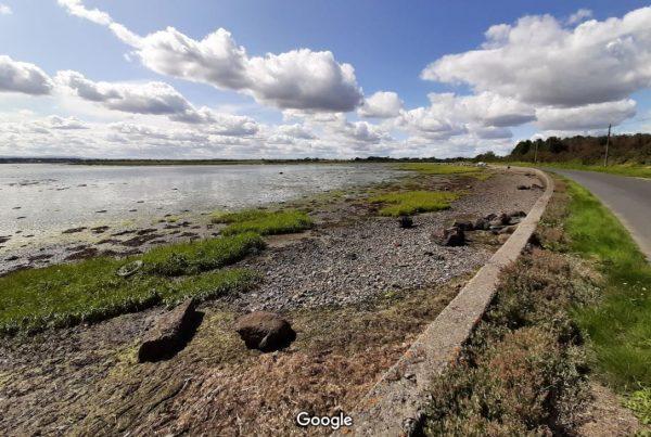 Broadmeadow Estuary