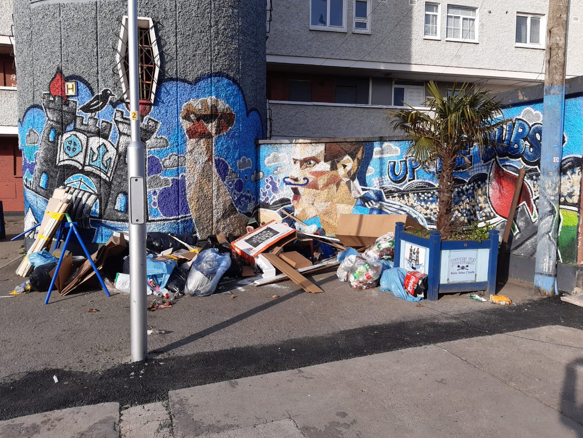 Illegal dumping contributes to 60% rat infestation increase in Dublin city