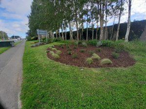 Clondalkin village bright planters