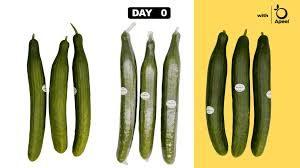 Plastic-Free Cucumbers