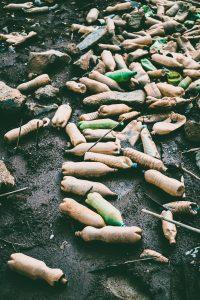 Environmental Plastic Pollution