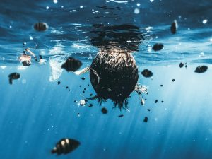 Microplastics in Sea